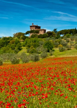 Does your dream vacation include Tuscany?