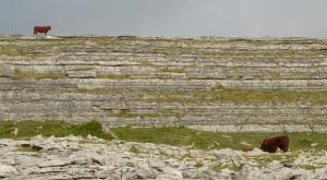 Bill Reuther King of the Hill Burren 2